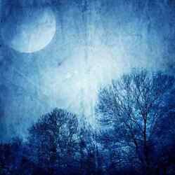 3d Blue Moon Forest Ceiling Wall Paper Wall Print Decal Wall Deco Aj Wallpaper