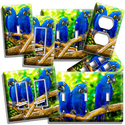 HYACINTH TROPICAL BLUE MACAW LOVE BIRDS PARROTS LIGHT SWITCH PLATE OUTLET DECOR