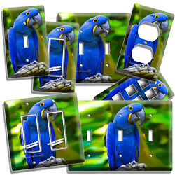 HYACINTH TROPICAL BLUE MACAW BIRD PARROT LIGHT SWITCH OUTLET PLATE ROOM HD DECOR