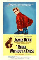Rebel Without A Cause 1955 Poster 40 X 60 Style Z - James Dean Rare Style