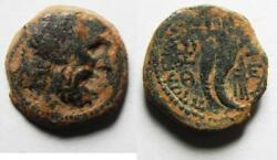 Zurqieh -as9104- Ptolemaic Kings Of Egypt. Ptolemy Ix Soter Ii. 115-104/1 Bc. Andaelig