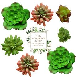 100 Prepackaged Bags Lifelike Designer Quality Faux Succulents  - I Paid $1000