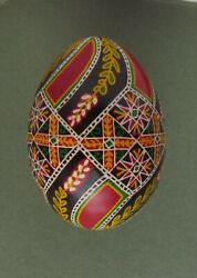 Pysanka Pysanky Easter Egg Art Written And Dyed On Hen Shell Multi Color Hm56