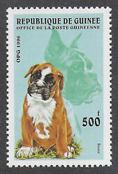 Dog Art Body Study Portrait Postage Stamp UnCropped BOXER Puppy Guinea MNH