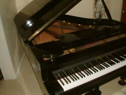 GRAND PIANO SCHAFER & SONS BLACK LACQUER EXCELLENT PLUS PADDED STORAGE BENCH