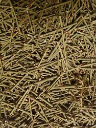 Mormon Tea Loose Leaf Cut In Three Ounce Pack. Refreshing And Invigorating.