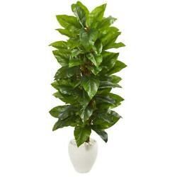 Large Leaf Philodendron Artificial Plant In White Planter Nearly Natural 63""