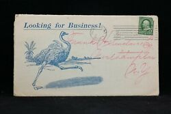 New York Ny City 1901 De Laval Separator Opening Advertising Postcard, Ostrich