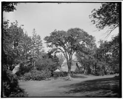 1902 Photo Of House For Aged People From The Hayes Garden Cambridge Mass K