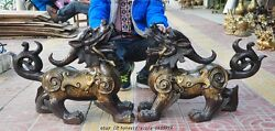 Lucky China Bronze Fengshui Snake Fish Guardian Plutus Pixiu Brave Troops Statue