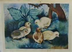 Folk Art Victorian 1880s Water Color Painting Of Baby Chicks Chickens Primitive