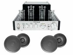 Blutube Tube Amplifier/home Theater Receiver+4 8 Black Ceiling Speakers