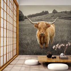 3d Ranch Highland Cows A020 Wallpaper Wall Mural Self-adhesive Assaf Frank Zoe