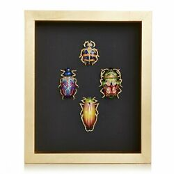 Jay Strongwater William Beetle Wall Art 14k Gold Shw3328-250 New