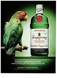 1989 Tanqueray English Gin Green Bottle Parrot Vintage Print Advertisement