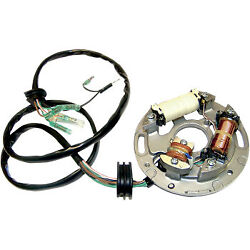 Wsm Stator Plate Assembly For Yamaha 004-240
