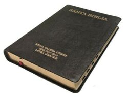 Rvg 2010 Bible - Large Print   Thumb Index   Genuine Leather Edition   Spanish