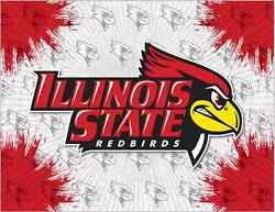 Illinois State Redbirds Hbs Gray Red Wall Canvas Art Picture Print