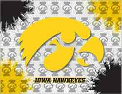 Iowa Hawkeyes Hbs Gray Yellow Wall Canvas Art Picture Print