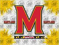 Maryland Terrapins Hbs Gray Yellow Wall Canvas Art Picture Print
