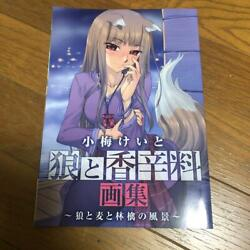 Koume Keito Wolf And Spice Book Of Paintings Illustration Book From Japan