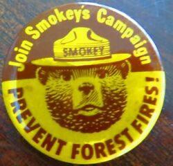 Smokey The Bear,join Smokey's Campaign Prevent Forest Fires Vintage Pin Button