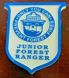 Junior Forest Ranger Smokey The Bear,only You Can Prevent Forest Fires Pin Badge