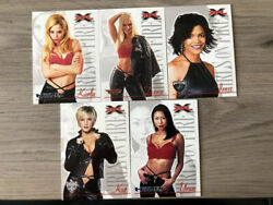Lot Of 23 2001 Hot Xfl Cheerleader Trading Cards - Get Them While They Are Hot