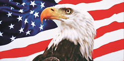 American Eagle With Flag Fiber Reactive Beach Towels Made In Brazil 30x60