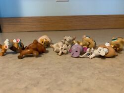 Lps Lot Authentic Dachshund Shorthair Cat Husky Puppy Glitter Anteater Collie