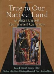 True To Our Native Land An African American New Testament Commentary, Blount-.