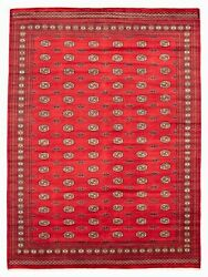 Hand-knotted Carpet 9'2 X 12'5 Finest Peshawar Bokhara Traditional Wool Rug