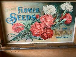 Old Antique Vintage Advertising Flower Seed Box Store Display Dm Ferry And Comp.