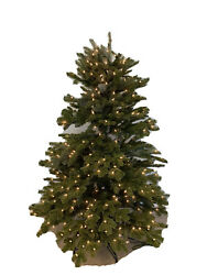 Balsam Hill Fraser Fir New Open Box 5.5' Tree With Clear Lights 599 Delightful