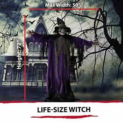 Halloween Prop,life-size Skeleton Witch,6 Function Multi Light,has Sound Color 5