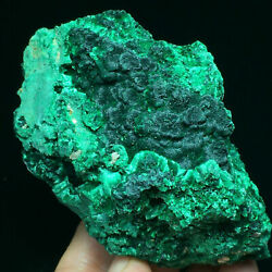 318g Natural Green Acicular Malachite Crystal Mineral Specimen/ From Congo