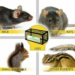 Harris Catch and Release Humane Animal and Rodent Cage Trap for Mice Rats Chip