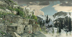 Rod Frederick On The Rocks - Mountain Goats Giclee On Canvas