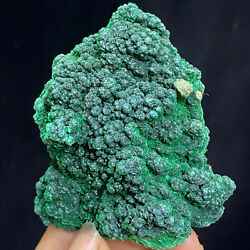 108g Natural Green Acicular Malachite Crystal Mineral Specimen/ From Congo