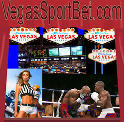 Vegas Sport Bet  .com Horses Football Domain Name For Sale Wager On Horses Bets