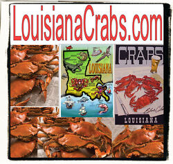 Louisiana Crabs.com Sell Online Store Crab Claws Seafood Market Domain Name URL