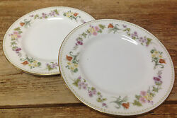 Mirabelle Wedgwood 2 Bread Plates Bone China Floral Green Dotted Rim R4537 White