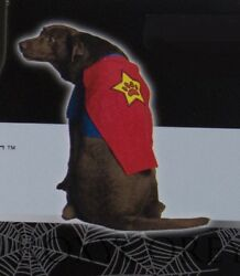 Celebrate It Red And Blue Super Paw Hero Pet Dog Costume Size Medium 15-30 Lbs