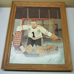 1966-67 General Mills Action Photo Tips Store Display Picture Glenn Hall Framed
