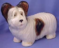 1940s SKYE SILKY TERRIER GERMANY 9