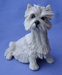 WEST HIGHLAND WHITE TERRIER EVE PEARCE DOG ENGLAND 5