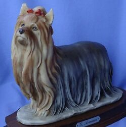 1983 YORKSHIRE SILKY  TERRIER DOG ARMANI 9