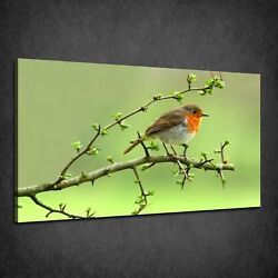 Beautiful Small Red Breasted Robin Bird Box Canvas Print Wall Art Picture