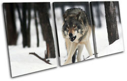White Wolf Wild Snowy Woods Animals Treble Canvas Wall Art Picture Print