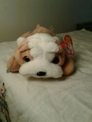 Ty Beanie Babies Wrinkles With Rare Double Tags Mwmt